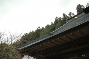 2012春キャンプ