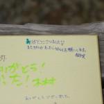 IMG_9245